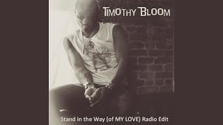 Stand in the Way (Of My Love) (Radio Edit)