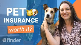 Is Pet Insurance worth it?   Everything you need to know