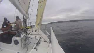 Bad Attitude (Carpenter 28) sailing in 10 knots of wind