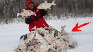 Крючки для зимняя рыбалка