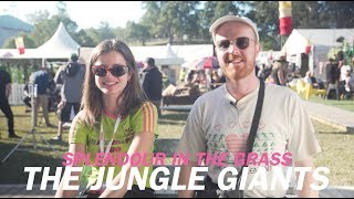 The Jungle Giants | 5 Questions With | Splendour In The Grass