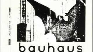 Bauhaus - Boys