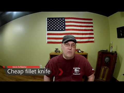 Best Electric Fillet Knife for the Money