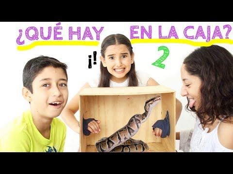 ¿QUÉ HAY EN LA CAJA? 2 EXTREMO / WHAT'S IN THE BOX CHALLENGE - Gibby :)