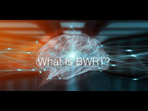 What Is Brain Working Recursive Therapy?