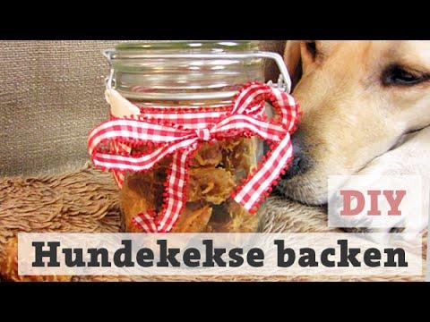 HUNDEKEKSE BACKEN | Thunfisch LECKERLI für HUND / KATZE selber backen DIY