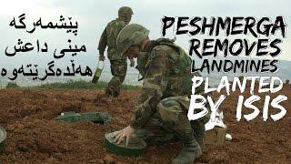 Peshmerga Removes Landmines Planted By ISIS