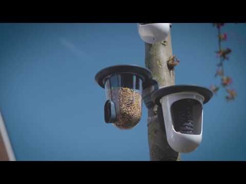 Singing Friends Wildbird Feeders