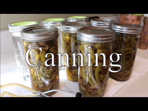 Canning Green Beans & WATER With Linda's Pantry