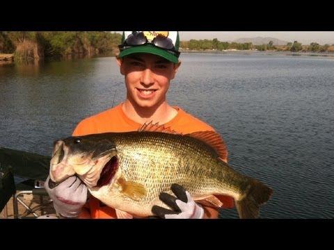 Monster 15 lb Bass
