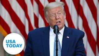 President Donald Trump gives update on coronavirus vaccine development | USA TODAY