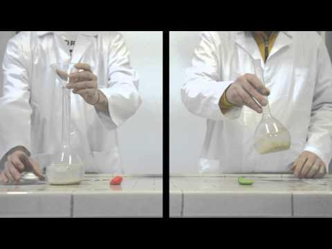 Fermentazione alcolica del lievito di birra