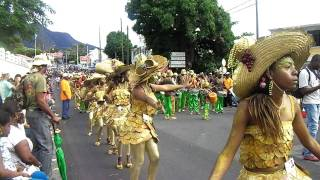 preview picture of video 'Bouyot Doré - Grande Parade du Mardi Gras de Basse-Terre, Guadeloupe 2012'