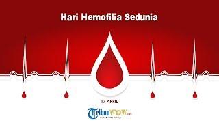KABAR APA HARI INI: Hari Hemofilia Sedunia