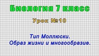 Биология 7 класс Урок 10