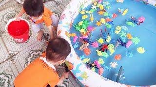 Đồ Chơi Trẻ Em Baby Fun ❤️ Trò Chơi Bắt Cá Thả Hồ Bơi và Làm Món Bánh Cá ❤️ Gia Đình Baby Shark