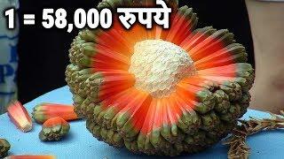 दुनिया के 5 सबसे महंगे फल ( 58 हजार का एक फल ) 5 Most Expensive Fruits In The World