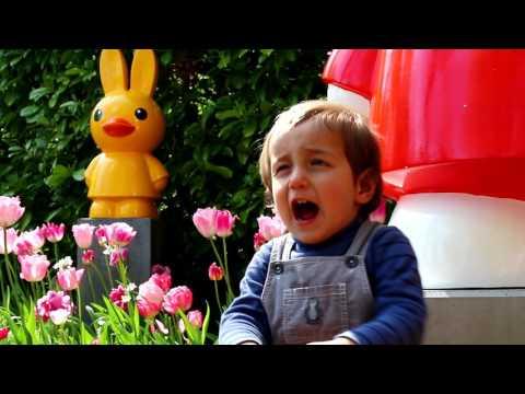Keukenhof - Parque de tulipanes en Holanda