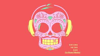 Faustix & Shannon Rani   Crying In The Sun (Le Boeuf Remix) [Official Audio]