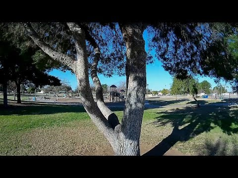 Geprc CineEye 79HD - FPV Park Early Morning Dodging & Through Trees(2s Battery)
