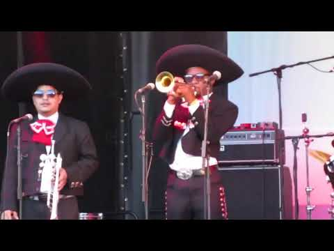 Mariachi Margarita - Mariachi Band Video