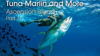 Spearfishing Ascension Island - Tuna, Marlin and More - PART 3 HD