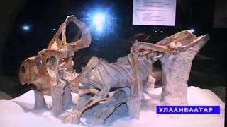 dinozavr RUS