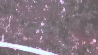 "slow motion HD rain 12 second clip ""Lorong Ah Soo"" Singapore"