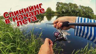 Спиннинговая рыбалка на реках средней полосы в июне июле