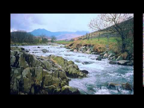 Ar Log:   Y Deryn Pur  -  The Gentle Dove