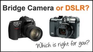 Bridge Camera or DSLR?