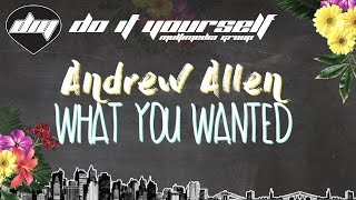 ANDREW ALLEN - What you wanted [Official lyric video]