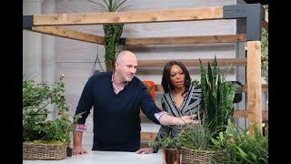 The Must-try Top Indoor Gardening Trends For 2020