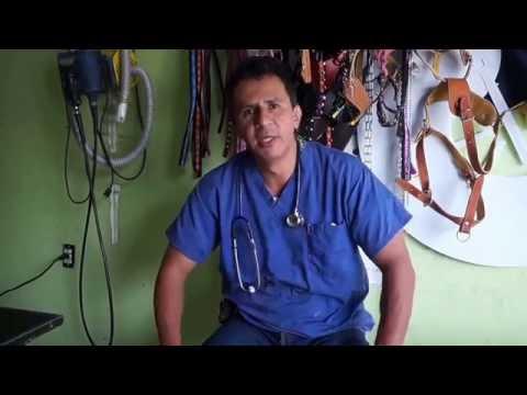 Los tratamientos del picor a la psoriasis
