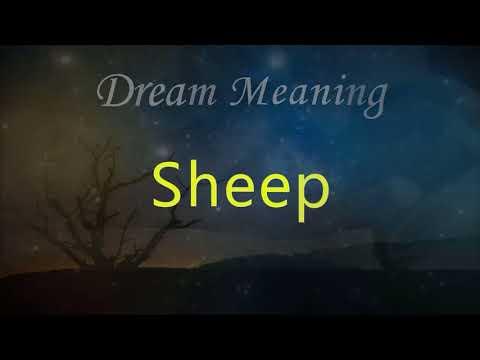 What does lamb dreams mean? - Dream Meaning - смотреть онлайн на Hah