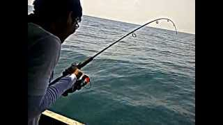 preview picture of video 'strike GT di Laut Sidoarjo'
