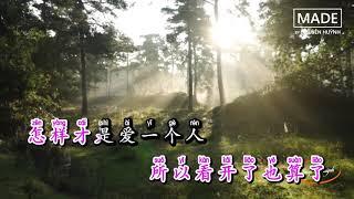 Karaoke [Pinyin] Em Quá Ngốc - Chùy Na Lisa | 我太笨 - 锤娜丽莎