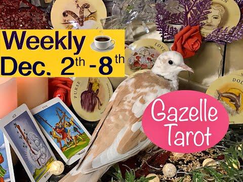 Weekly Tarot Reading December 2 - December 8th ⭐️Wish Comes True🪐 #tarot #tarotreader #tarotreading