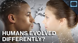 Why Europeans And Asians Evolved So Differently