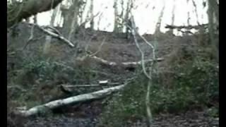 preview picture of video 'The Ragdoll Biker Crash  Original Footage BMX'