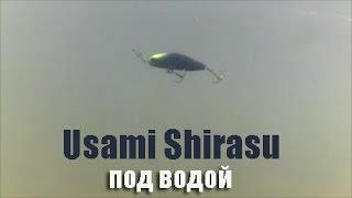 Shirasu minnow 48