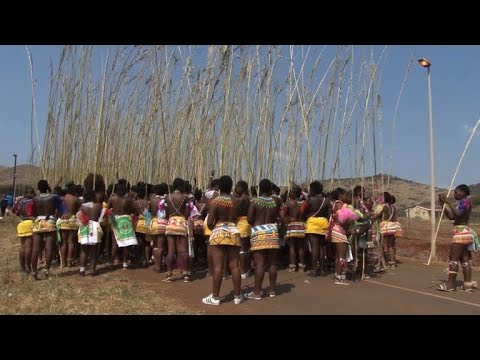 Young women dance to the Zulu king to celebrate virginity