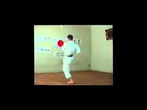 Shitoryu Karatedo Kihon Kata - Juni no Kata III