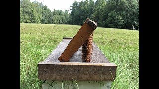 Watch this BEFORE you try Foundationless Beekeeping!