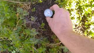 Very Cold Spring- Soil Temp Check. Can I plant tomatoes yet?