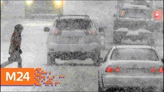 Водителей и пешеходов просят быть внимательнее на дорогах из-за снегопада - Москва 24