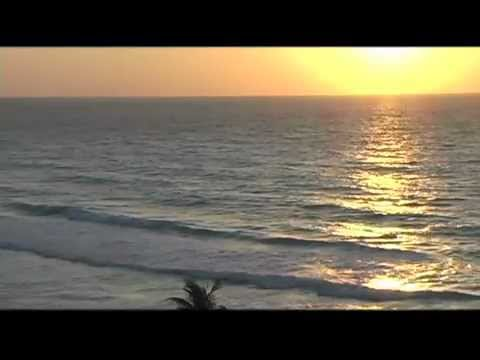 Sam Hunter (Tropical Retreat Official Music Video)