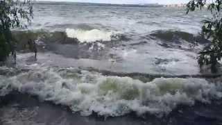 Рыбалка на реке урал близ магнитогорска отчеты