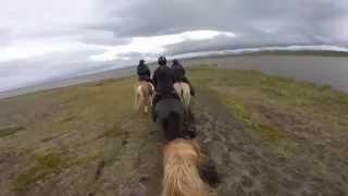 Impressionen von unserer Reittour in Island!