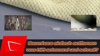 Baumharz entfernen - eingetrockneten Harz vom Autolack entfernen - Harzflecken Koch Chemie Eulex